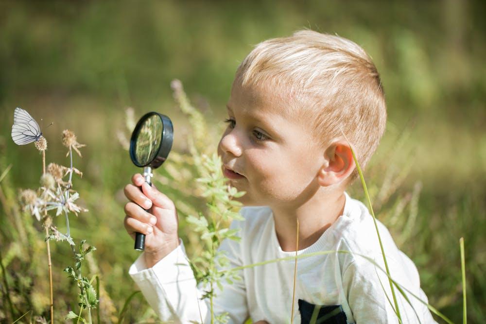 Shutterstock 1338795815.jpg?ixlib=rails 3.0